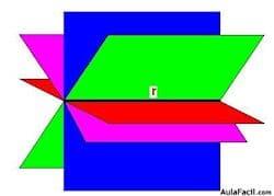 Esquema 1- por un punto pasan infinitos planos
